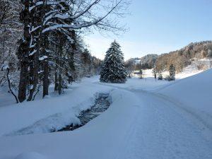 winter hikes in switzerland - Fadaera