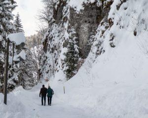 winter hikes in switzerland - Schwarzee winter