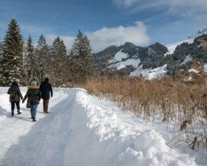 winter hikes in switzerland - Schwarzee