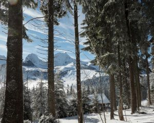 winter hikes in switzerland - Selibuel