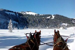 winter hikes in switzerland - Lauenensee